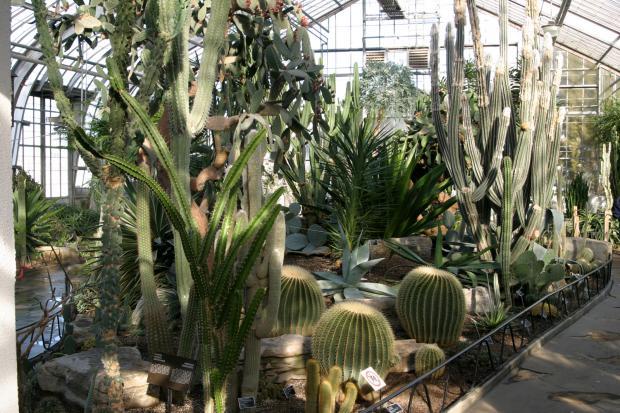 Arid Regions Conservatory.