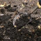 Du compost ajouté à un potager