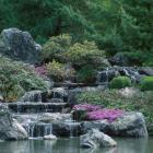 Cascade au Jardin japonais.