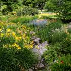 Vue générale du ruisseau fleuri