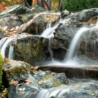 A cascade of water in the Japanese garden