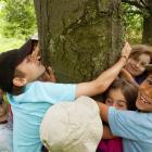 Camp de jour les Arboricoles.