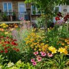 Jardin avec fleures