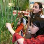 Activité éducative au Jardin botanique