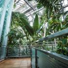 Jardin botanique - Serre Molson