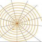 Weaving a web, step 6.